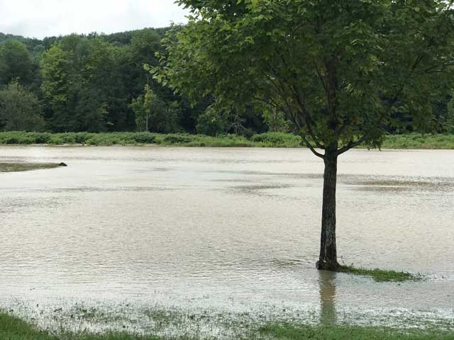 Flash Flooding Vestal